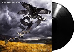 David Gilmour - Rattle that Lock (5)