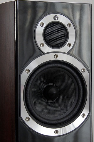 Wharfedale Diamond 10.3 speakers close up