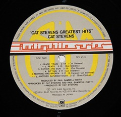 audifiel vinyl